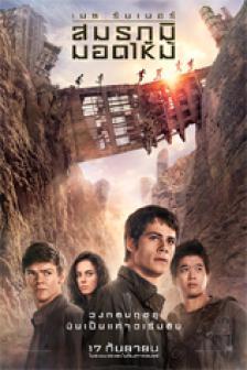 Maze Runner 2 : The Scorch Trials - เมซ รันเนอร์ : สมรภูมิมอดไหม้