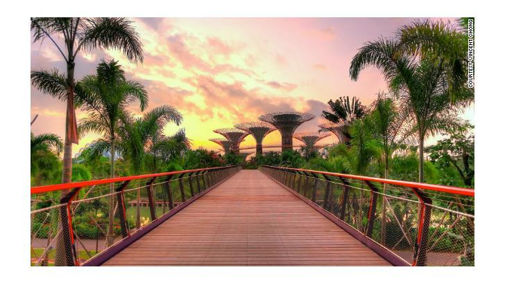 สิงคโปร์ เปิดสวนสาธารณะแห่งอนาคต สร้างต้นไม้สังเคราะห์แสงเป็นพลังงานไฟฟ้า