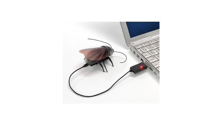 แมงสาบบังคับวิทยุ ! น่ารักน่าเล่น