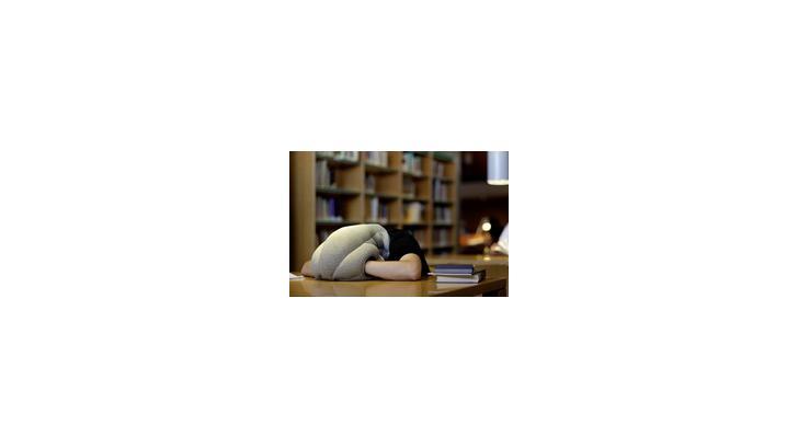 Ostrich Pillow หมอนวิเศษ หลับสบายได้ทุกที่