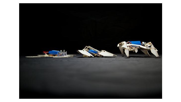 เมื่อเทคนิคการพับกระดาษกับการสร้างหุ่นยนต์ กลายเป็นแนวทางการออกแบบหุ่นยนต์ในอนาคต