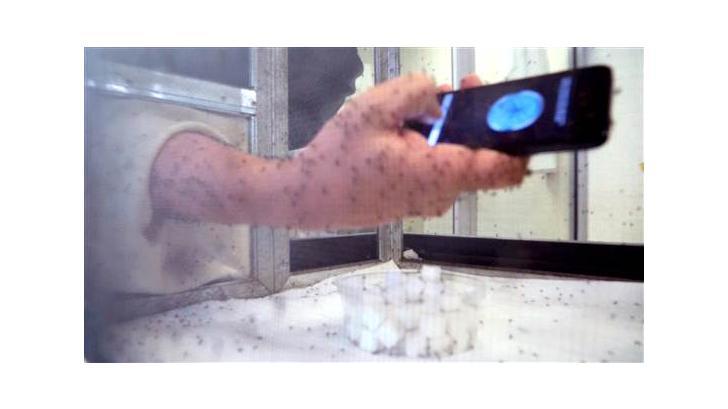 ทดสอบแอปฯไล่ยุงบนมือถือ Anti Mosquito ทึ่ง ! ไอโฟนไม่โดนยุงกัดเลยสักตัว