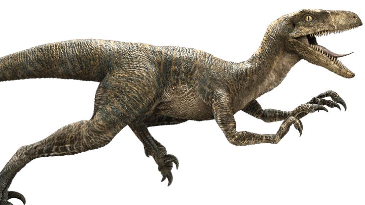 คลิป ไดโนเสาร์จอมโหด วิ่งไล่คนใน ลานจอดรถ แกล้งกันแบบนี้ มีช็อคค!!