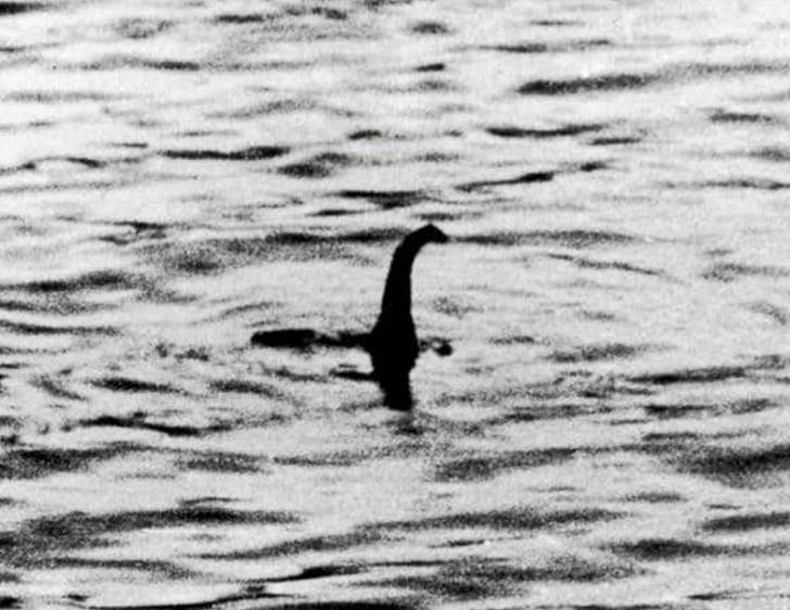 สัตว์ประหลาดแห่งทะเลสาบล็อคเนส หายตัวไปนาน 8 เดือนแล้ว!