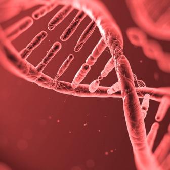 จีนนำหน้าสหรัฐอเมริกาแล้ว ในเรื่องการดัดแปลงพันธุกรรม เพื่อรักษาโรค แต่มีความน่ากลัวแฝงอยู่