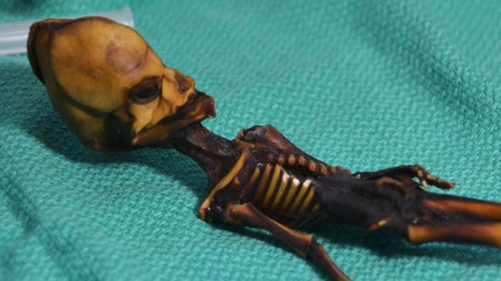 ปมปริศนา มัมมี่มนุษย์ต่างดาวจากอารยธรรมโบราณ ถูกเปิดเผยแล้ว!!!