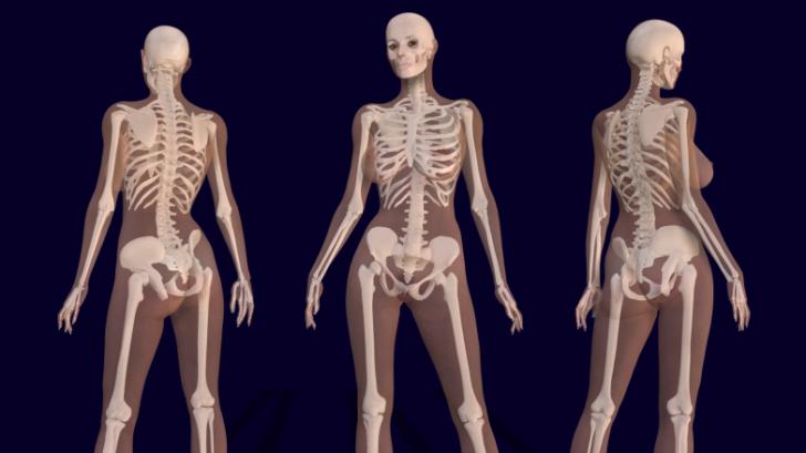 ข่าวใหญ่ นักวิทยาศาสตร์ค้นพบอวัยวะใหม่ในร่างกายมนุษย์!!!