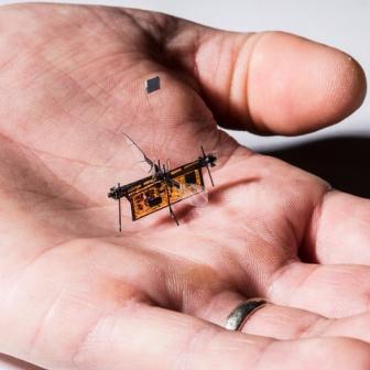 นวัตกรรมใหม่ RoboFly หุ่นยนต์ขนาดเท่าแมลง บินได้แบบไร้สาย ใช้งานในที่โดรนเข้าไม่ถึง