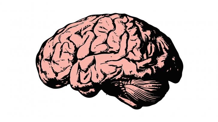 อยากลืมก็ลบซะ นักวิจัยสร้างอุปกรณ์แฮคสมอง ที่สามารถแก้ไขความรู้สึกและความทรงจำได้