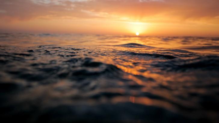 เรือหุ่นยนต์ยิงจรวดได้ ท่องไปในมหาสมุทรโดยที่ไม่ต้องมีคนอยู่บนเรือ เพื่องานด้านวิทยาศาสตร์