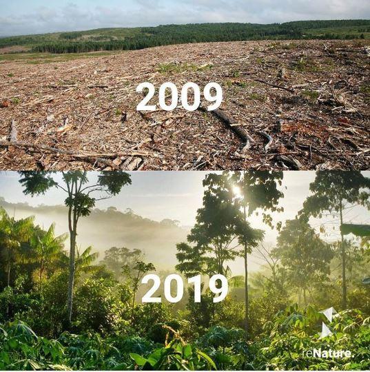 20 ภาพอันทรงพลัง ที่ทำให้เรารู้ว่า ยังไม่ควรสิ้นหวังในการอนุรักษ์ธรรมชาติ