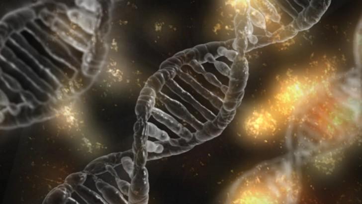 จริงหรือไม่? การดัดแปลงพันธุกรรม อาจทำให้ได้คนที่ฉลาดเหนือมนุษย์