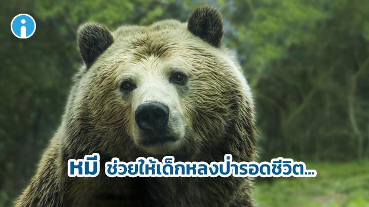 เมาคลี อาจจะเป็นเรื่องจริง! เมื่อเด็กอ้างว่ารอดชีวิตจากการหลงป่า 3 วัน โดยมีหมีเป็นเพื่อน