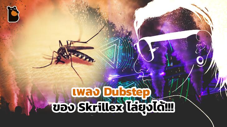 สุดทึ่งเมื่อดนตรี Dubstep ของ Skrillex ใช้ไล่ยุงได้... วั๊บ วั๊บ วั๊บ วั๊บ ว้าวววววว กันเลยไหมหล่ะ