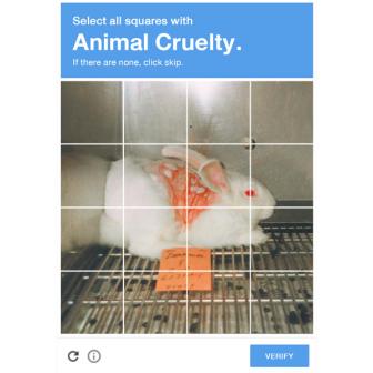 PETA ประเทศไทย ส่งแคมเปญ The Human Check สร้างการรับรู้เหตุการณ์ทารุณสัตว์ผ่าน CAPTCHA