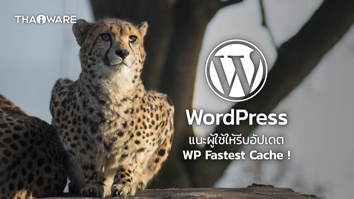 WordPress แนะนำให้ผู้ใช้รีบอัปเดต WP Fastest Cache หลังตรวจพบช่องโหว่ภายในระบบ !